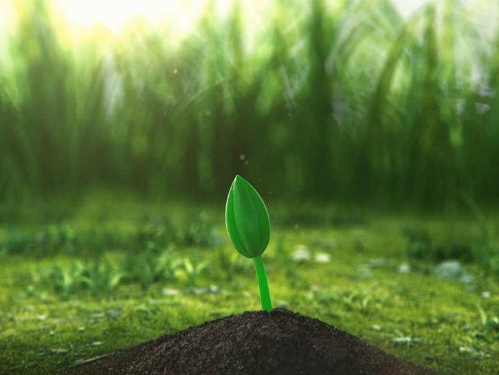 Tunto Green Power Technology Co.,Ltd